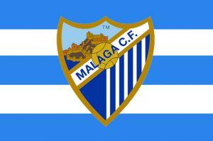 MCF CLASSIC FLAG
