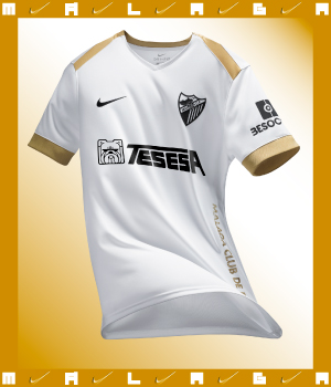 https://www.tiendamalagacf.com/media/slider/25/Boxhome-3a_eq.jpg